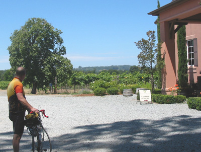 Winery Stop